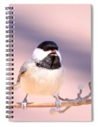 Img_0001 - Carolina Chickadee Spiral Notebook