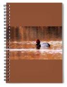 Img_0001 - Redhead Spiral Notebook