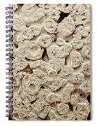 Instant Mashed Potato Flakes, Sem Spiral Notebook