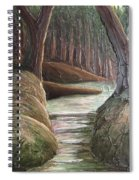 Into The Woods II Spiral Notebook