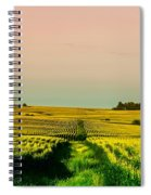 Iowa Cornfield Panorama Spiral Notebook
