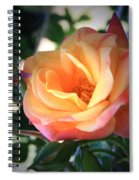 Jacob's Rose Spiral Notebook