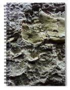 Jaw Bone Spiral Notebook