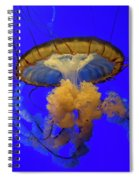 Jellyfish At California Academy Of Sciences In San Francisco, California Spiral Notebook