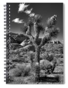 Joshua Tree And Cloud Spiral Notebook