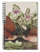 Key West Dove Spiral Notebook
