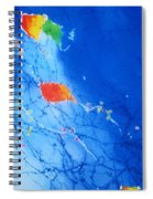 Kite Sky Spiral Notebook