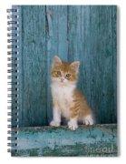 Kitten On A Greek Island Spiral Notebook