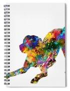 Labrador Retriever-colorful Spiral Notebook