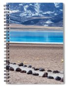 Lake Miscanti In Chile Spiral Notebook