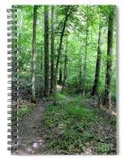 Lakeside Trail Winding Path - Yellowwood Lake Spiral Notebook