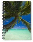Lanikai Palm Tree Spiral Notebook
