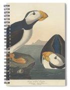Large-billed Puffin Spiral Notebook