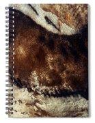 Lascaux: Horse Spiral Notebook