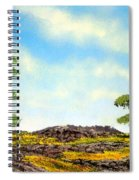 Lava Rock And Flowers Spiral Notebook