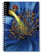Lazuline Spiral Notebook