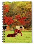Lazy Autumn Day Spiral Notebook