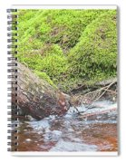 Leaning Tree Trunk By A Stream Spiral Notebook