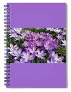 Let It Spring Spiral Notebook