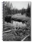 Liesijoki.  Seitseminen National Park Spiral Notebook