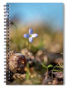 Life Delicate And Strong Spiral Notebook