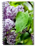 Lilac Drops Spiral Notebook