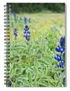 Lilac Flower In Green Canvas Spring Has Arrived 1 Spiral Notebook