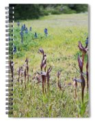 Lilac Flower In Green Canvas Spring Has Arrived 2 Spiral Notebook