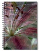 Lily Blossom Spiral Notebook
