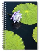 Lily Love Spiral Notebook