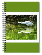 Little Blue Heron Fishing Spiral Notebook