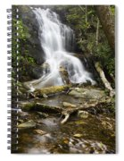 Log Hollow Falls North Carolina Spiral Notebook