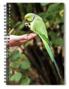 London Parakeet Spiral Notebook