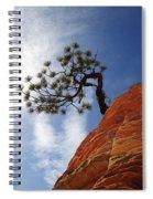 Lone Bonsai Tree In Zion Spiral Notebook