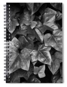 Lone Ranch Leaves 4930 Spiral Notebook