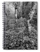 Lone Ranch Wood 4937 Spiral Notebook