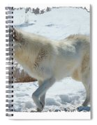 Lone White Wolf Spiral Notebook
