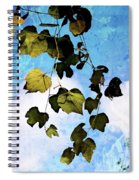 Look Up Again Spiral Notebook