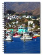 Love Of The Game Spiral Notebook