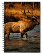 Madison Bull Spiral Notebook