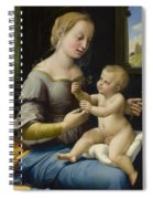 Madonna Of The Pinks Spiral Notebook