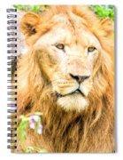 Majestic Lion Spiral Notebook