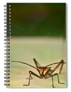 Martian Monster Spiral Notebook