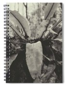 Mary Cairn Cross Reserve Spiral Notebook