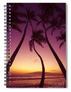 Maui Palms Spiral Notebook
