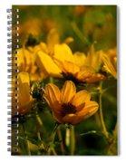 Maximilian Sunflowers Spiral Notebook