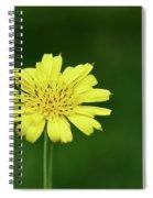 Meadow Salsify Spiral Notebook