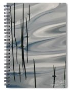 Mesmerized Spiral Notebook