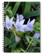 Mexican Clover Spiral Notebook