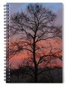 Misty Dawn Spiral Notebook
